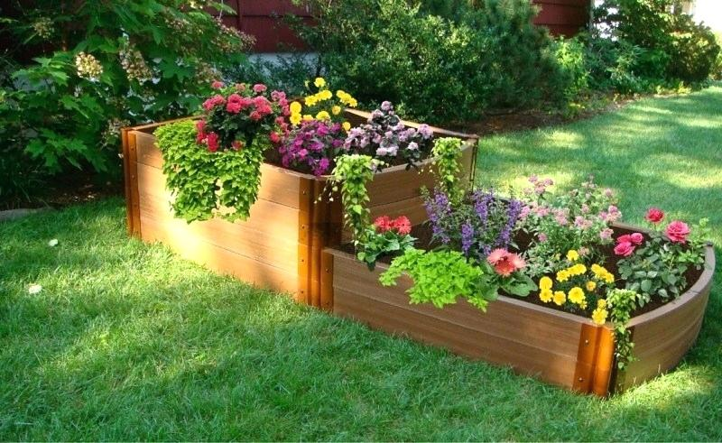 small flower bed