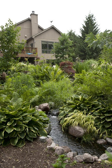 Designing Your Dream Pond 9