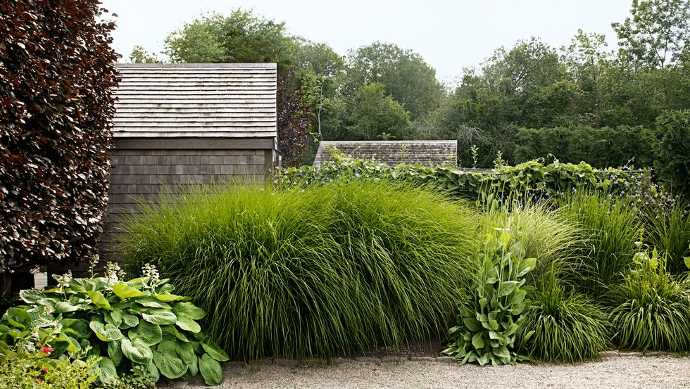 Truth About Garden Landscaping Design in Philippines