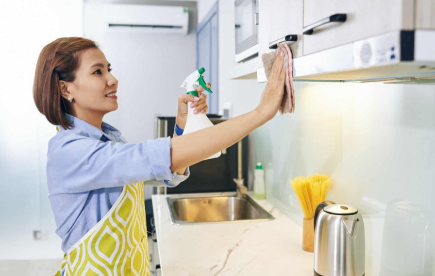 How To Keep Ants Off Your Kitchen Counter