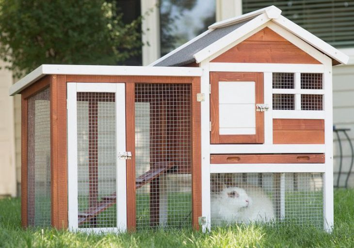How to Build a Rabbit Hutch Quickly